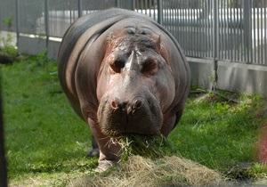 В Киевском зоопарке рассказали, сколько стоит опека над животными
