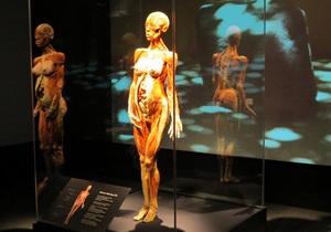 В Нью-Йорке известный патологоанатом открыл выставку Body Worlds