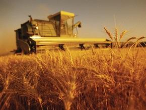 Украина собрала почти 41 млн тонн зерна