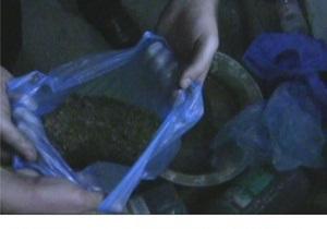 В Днепропетровской области СБУ разоблачила крупную наркогруппировку