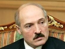 Лукашенко грозится  вышвырнуть  посла США из Беларуси