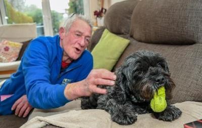 Собака помогла хозяину выйти из комы