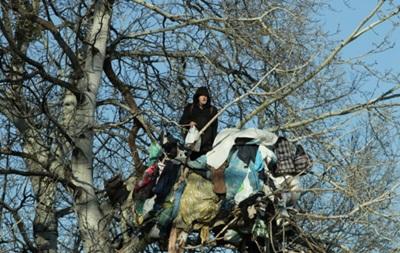В Киеве пенсионер три года живет на дереве