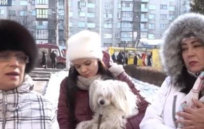 У Чернівцях жінка отруїла понад 30 собак