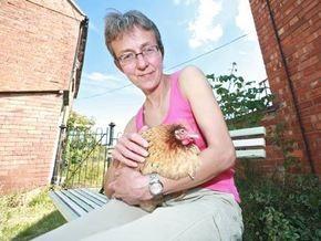 В Британии впервые вылечили курицу от рака