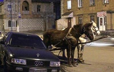 В Тернопольской области лошади смертельно травмировали мужчину