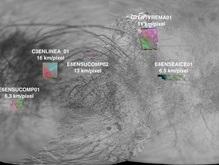 Астрономы объяснили происхождение таинственных впадин на спутнике Юпитера