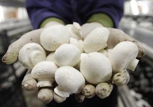В Японии появились радиоактивные грибы