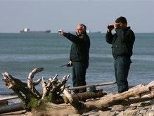 Моряки с затонувшего сухогруза Толстой живы (обновлено)