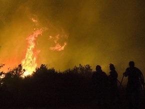 На пасхальные выходные в Киеве огонь повредил 1,3 га лесопарковых зон