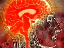 Ученые выяснили, люди каких профессий чаще используют оба полушария мозга