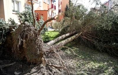 У Польщі через урагани без світла залишилося понад 11 тисяч домогосподарств
