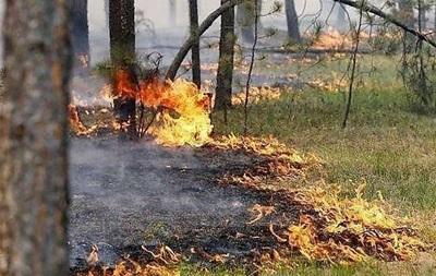 ДСНС попередила про високу пожежну небезпеку