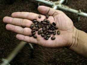 Ученые: Употребление кофе замедляет развитие гепатита С