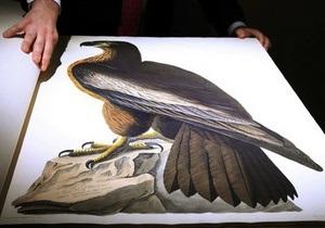 Самую дорогую в мире книгу Птицы Америки продали почти за $8 млн