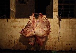 Ограничение на ввоз украинского мяса и молока в РФ вступит в силу уже с завтрашнего дня