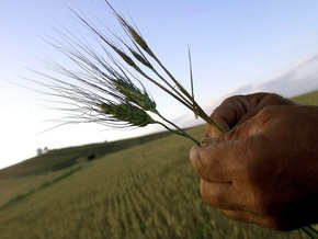 Россия обогнала Украину на мировом рынке зерна