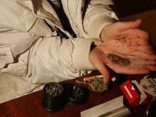 Водители маршруток курят марихуану для повышения бдительности