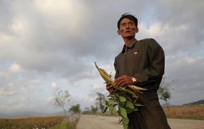 Половина жителей Северной Корее недоедает – ООН