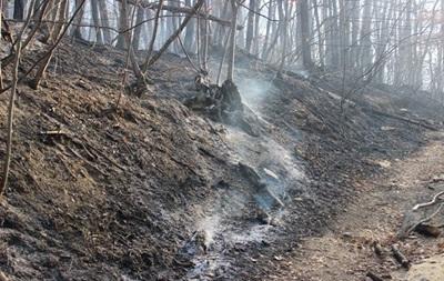 В Крыму второй крупный лесной пожар за сутки