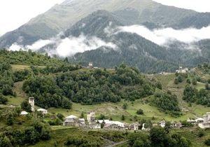 В Грузии появилась первая оливковая плантация