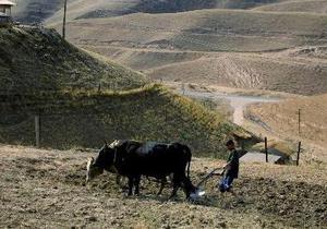 Таджикистан и Кыргызстан расследуют второе за два месяца массовое убийство на границе