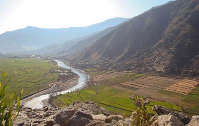 В Афганистане заявили о возможном убийстве мигрантов в Иране