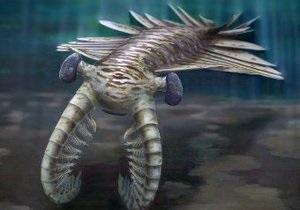 Ученые доказали, что у двухметровой доисторической креветки были огромные глаза