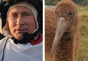 Фотогалерея: Путин - альфа-самец. Президент России возглавил стаю журавлей