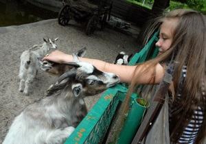 Киевский зоопарк посетят европейские эксперты