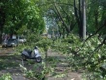 В Украине снова объявлено штормовое предупреждение