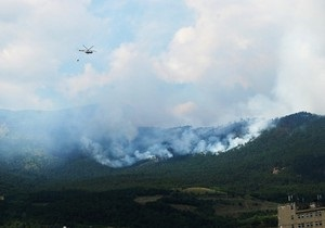 Бушующий над Ялтой лесной пожар локализован