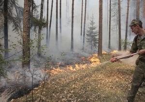 В лесу под Ялтой трое туристов из Донецка устроили пожар