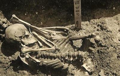 В Японии нашли древнейшую жертву нападения акулы возрастом 3000 лет