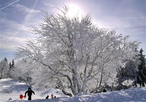 Прогноз погоды на пятницу, 12 февраля