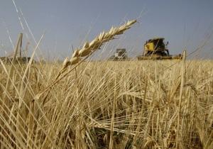 США понизили прогноз урожая зерна в Украине