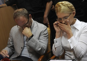 Власенко: Американские юристы признали политическим газовое дело Тимошенко