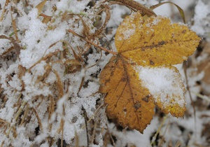 Сегодня ночью и завтра днем в Украине ожидается снег