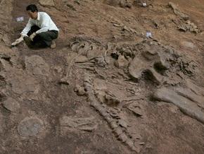 Обнаружено крупнейшее в мире кладбище динозавров