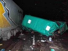 Кровавое ДТП в Житомирской области: виновен водитель грузовика