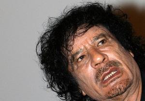 Жириновский предложил Каддафи переехать в Москву