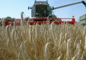 Азаров заявил, что зерна нового урожая хватит Украине на два года
