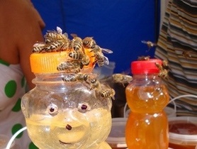 В Тернополе установили памятник пчеле