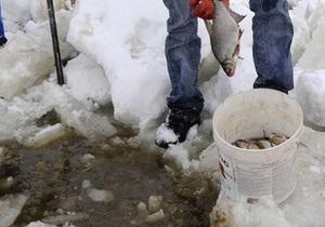 Погибшая из-за спуска воды в водохранилище рыба всплыла на поверхность столичных водоемов