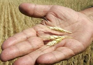 Аграрный фонд обещает обеспечить Украину мукой и зерном