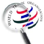 ВТО приводит в Украину инвестиции