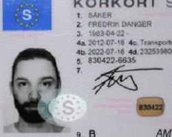 В Швеции художник нарисовал автопортрет для водительского удостоверения