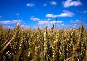 Украинские аграрии собрали почти два миллиона тонн зерна