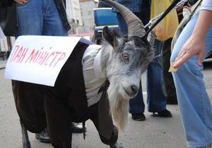 Акция против Табачника: под Администрацию Президента привели живого козла