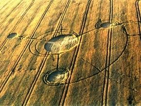 В России на пшеничном поле появились загадочные круги